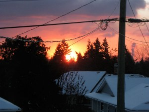 Sun rising to the top of the trees, Departure Bay, Nanaimo