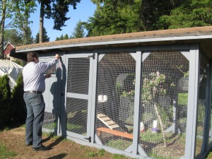 large chicken coop and run